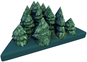 2015-10-30 ForestFir